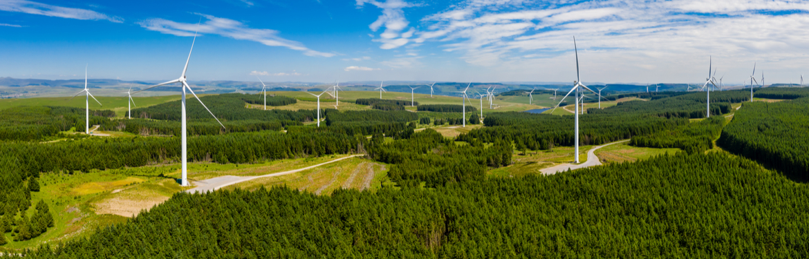 Aerial photo of wind turbines surrounded by woods in Wales, UK